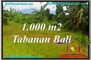 Magnificent PROPERTY Tabanan Selemadeg BALI 1,000 m2 LAND FOR SALE TJTB311