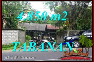 FOR SALE Beautiful LAND IN TABANAN TJTB330