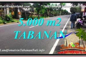 Beautiful LAND SALE IN Badung TJTB332