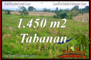 Beautiful PROPERTY TABANAN BALI 1,450 m2 LAND FOR SALE TJTB343