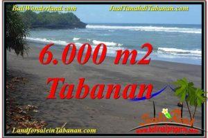 Magnificent PROPERTY TABANAN BALI LAND FOR SALE TJTB345