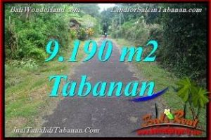 FOR SALE Magnificent PROPERTY LAND IN Tabanan Selemadeg BALI TJTB368