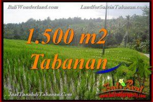 Exotic PROPERTY 1,500 m2 LAND FOR SALE IN TABANAN Selemadeg BALI TJTB375