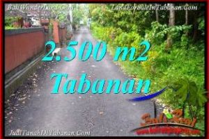 Exotic PROPERTY 2,500 m2 LAND FOR SALE IN TABANAN TJTB391