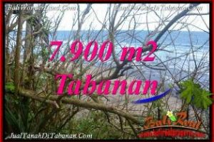 Magnificent PROPERTY 7,900 m2 LAND SALE IN TABANAN SELEMADEG BALI TJTB392