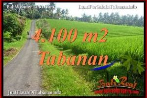 Affordable TABANAN BALI LAND FOR SALE TJTB394