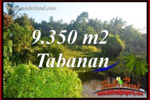 Magnificent Property Tabanan Selemadeg Bali 9,350 m2 Land for sale TJTB409