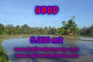 Property in Bali for sale, Fantastic view in Ubud Payangan – TJUB413