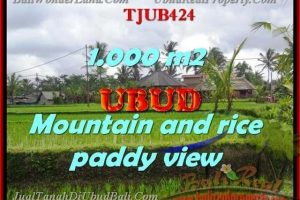Magnificent PROPERTY 1,000 m2 LAND SALE IN UBUD BALI TJUB424