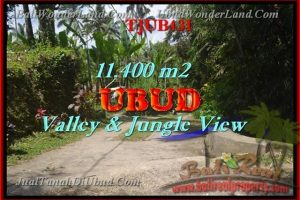 Exotic PROPERTY 11,400 m2 LAND IN UBUD BALI FOR SALE TJUB431
