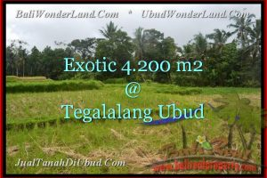 Exotic PROPERTY 4,200 m2 LAND IN UBUD BALI FOR SALE TJUB461