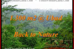 Affordable UBUD 1,300 m2 LAND FOR SALE TJUB481