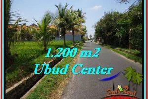 Affordable PROPERTY LAND FOR SALE IN UBUD TJUB525