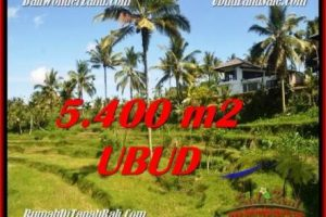 FOR SALE Beautiful 5,400 m2 LAND IN UBUD BALI TJUB550