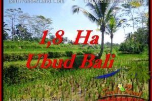 LAND SALE IN Ubud Payangan BALI TJUB553