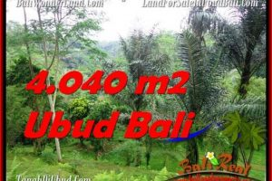Exotic PROPERTY LAND IN UBUD FOR SALE TJUB555