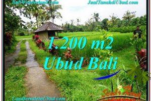Ubud Payangan BALI LAND FOR SALE TJUB559
