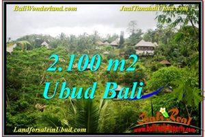 FOR SALE Beautiful LAND IN Ubud Payangan BALI TJUB572