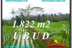 Affordable 1,822 m2 LAND SALE IN UBUD TJUB574