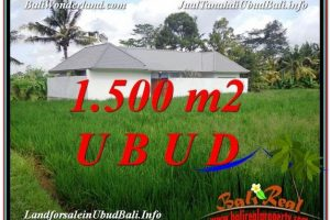 Beautiful PROPERTY 1,500 m2 LAND IN Sentral Ubud FOR SALE TJUB600