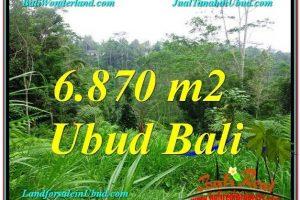 Affordable PROPERTY LAND SALE IN Ubud Tampak Siring BALI TJUB602