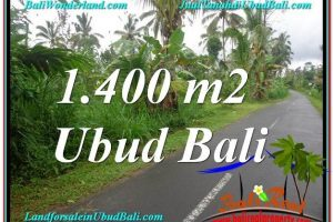 Magnificent Ubud Tegalalang BALI LAND FOR SALE TJUB612