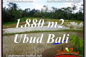 Affordable PROPERTY LAND IN UBUD FOR SALE TJUB613
