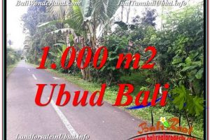 Exotic PROPERTY 1,000 m2 LAND SALE IN UBUD BALI TJUB614