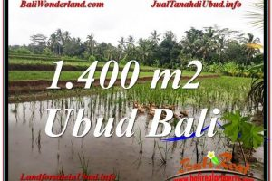 Exotic PROPERTY UBUD LAND FOR SALE TJUB615