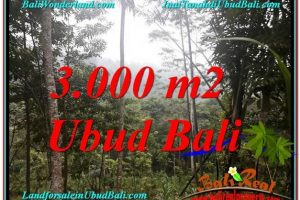 Magnificent PROPERTY LAND SALE IN UBUD TJUB617