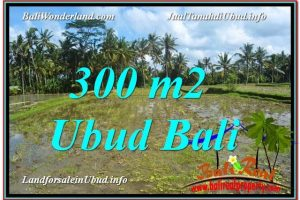 FOR SALE Beautiful PROPERTY LAND IN UBUD TJUB619