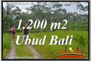 Affordable 1,200 m2 LAND SALE IN UBUD TJUB624