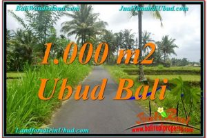 Exotic PROPERTY 1,000 m2 LAND SALE IN UBUD BALI TJUB634