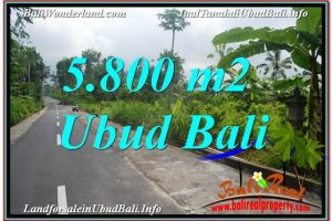 Beautiful 5,800 m2 LAND IN UBUD FOR SALE TJUB637