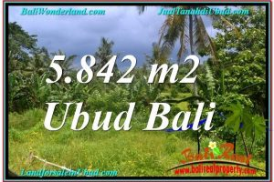 Beautiful PROPERTY 5,842 m2 LAND FOR SALE IN Sentral / Ubud Center TJUB638