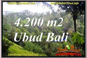LAND SALE IN Sentral / Ubud Center BALI TJUB639