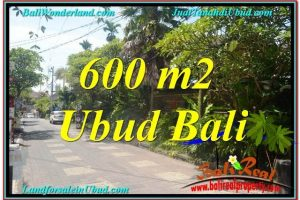 Exotic Sentral / Ubud Center BALI LAND FOR SALE TJUB644
