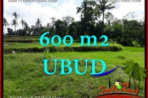 Magnificent PROPERTY 600 m2 LAND SALE IN Ubud BALITJUB657