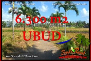 LAND FOR SALE IN UBUD BALI TJUB662