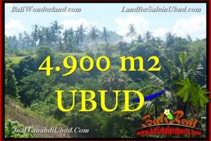 4,900 m2 LAND FOR SALE IN UBUD BALI TJUB665