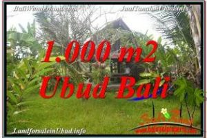 Magnificent PROPERTY LAND IN SENTRAL UBUD FOR SALE TJUB680