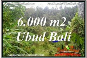 Beautiful PROPERTY 6,000 m2 LAND SALE IN UBUD TEGALALANG TJUB682