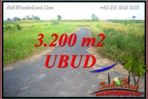 FOR sale Beautiful Property 3,200 m2 Land in Ubud Singapadu Bali TJUB736