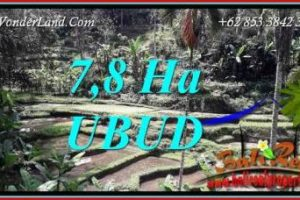 Magnificent Ubud Land for sale TJUB741