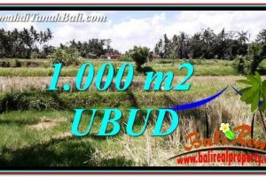Beautiful LAND FOR SALE IN UBUD BALI TJUB760