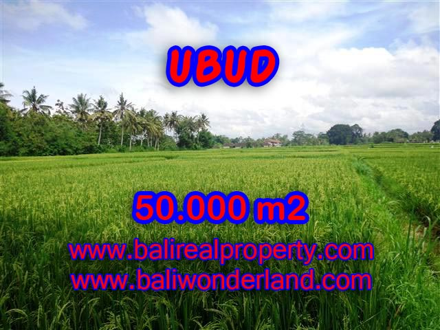 Magnificent Land for sale in Bali, paddy view by the river in Central Ubud Bali – TJUB351