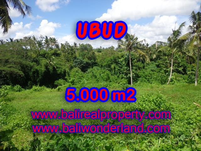 Land for sale in Bali, exotic view in Central Ubud Bali – TJUB353