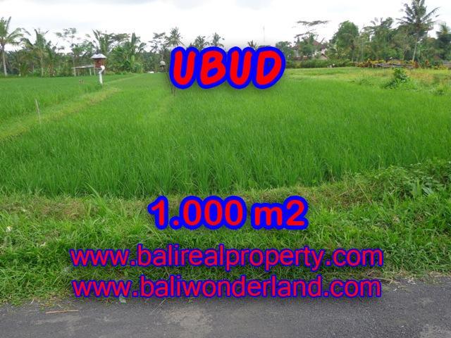 Amazing Land in Bali for sale in Ubud Tampak siring Bali – TJUB345