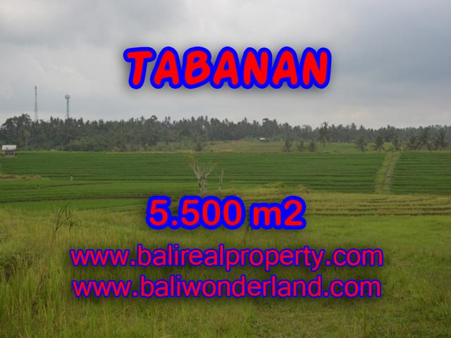 Property sale in Bali, Beautiful land for sale in Tabanan Bali – TJTB080