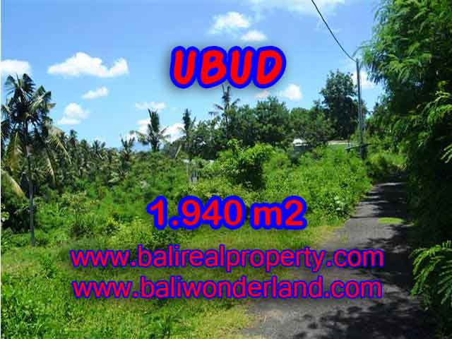 Stunning Land for sale in Bali, rice field, mountain and river view in Ubud Bali - TJUB379